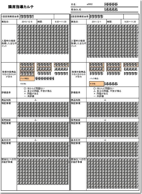 コールアセスメント評価者用資料(サンプル)イメージ